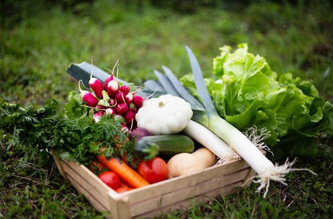 Rau củ theo mùa cùng khoai tây và bí ngô nghiền